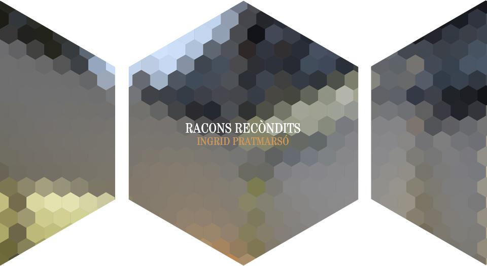 racons ingrid1 Nº3. Canvi