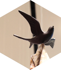 SWALLOWS INVADE THE HERMÈS STORE