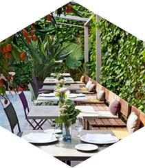 El restaurante windsor inaugura su terraza jard n - Restaurantes passeig de gracia ...