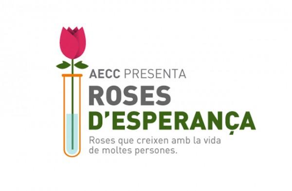 rosa-esperanza-sant-jordi-aecc-paseo-de-gracia-1