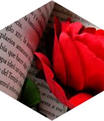Sant Jordi, día de encuentro entre escritores y lectores