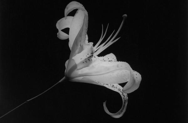 perfect-lovers-arte-en-tiempo-de-sida-exposicion-fundacio-sunol-1