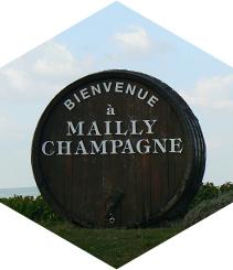 Champagne Raphaël Bérêche, Un vino para siempre