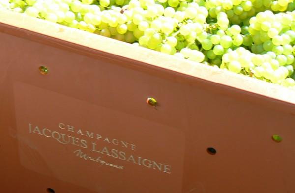 champagne-jacques-lassaigne-montgueux-7