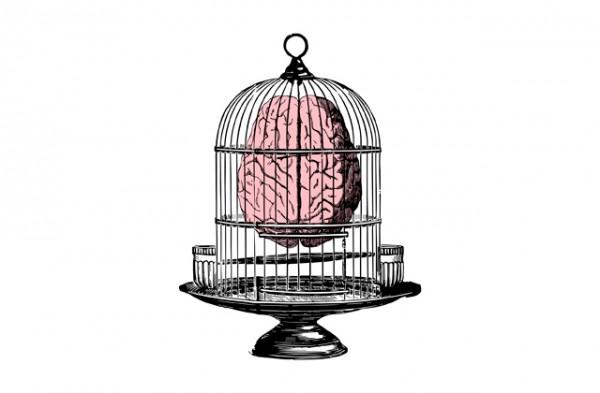 braincage-Cinta-Hosta-paseodegracia-1