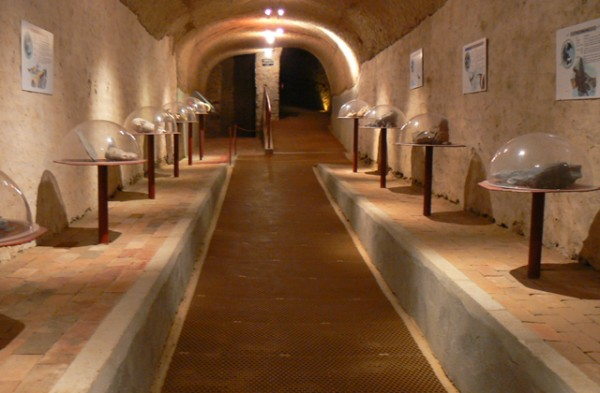 champagne-cave-aux-coquillages-6