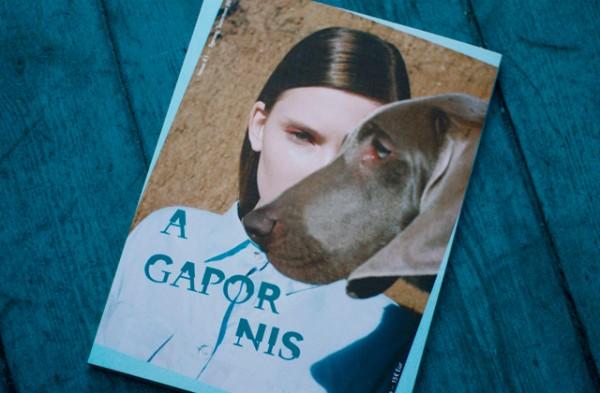 agapornis-magazine-7