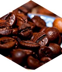 Tienes una cita con el café de calidad en Independent Barcelona Coffee Festival