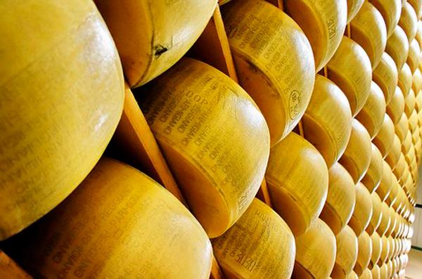 parmigiano-reggiano-1574183__340