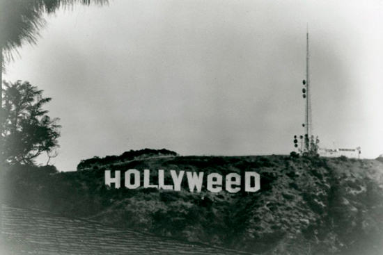 hollyweed sign hollywood sign california 800x535 De Hollywood  a Hollyweed