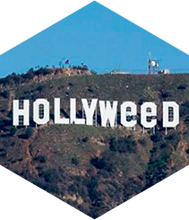 De Hollywood  a Hollyweed