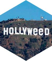 De Hollywood  a Hollyweed