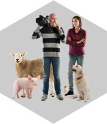 Empatía, la clave del respeto animal